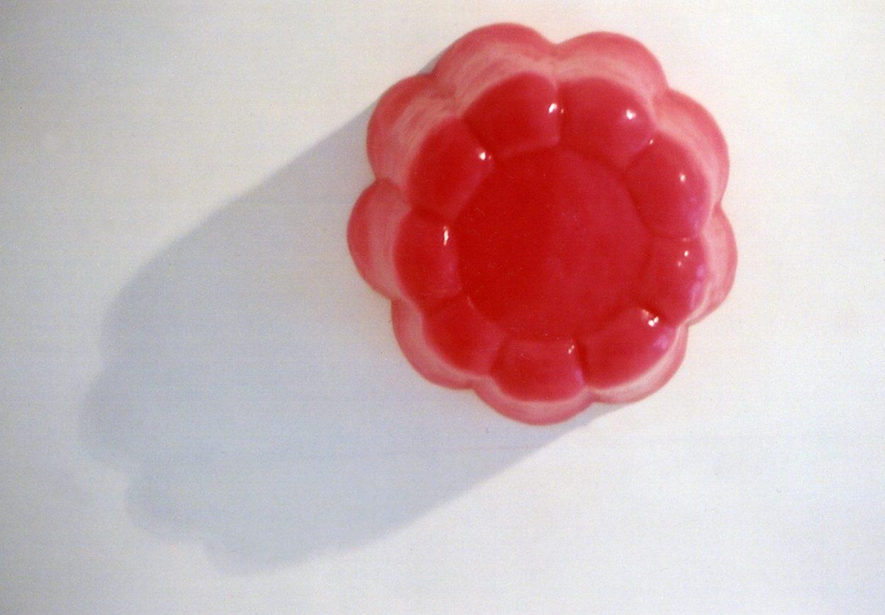 Pink plum, Koosje Schmeddes, 200